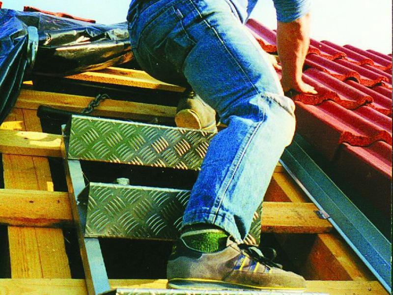 echelle de toit en alu plettac chafaudages. Black Bedroom Furniture Sets. Home Design Ideas